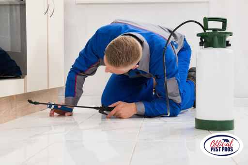 Pest Control Services Reedley California