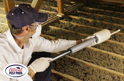 Termite Control Fowler CA